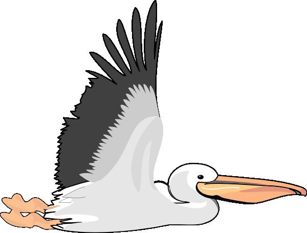 Pelican clipart. Clip art at clker