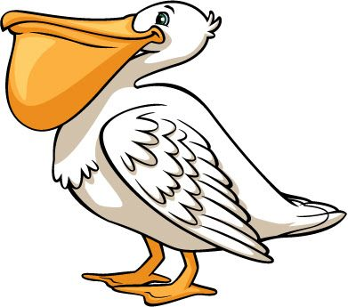 Pelican clipart. Clip art birds birdhouses