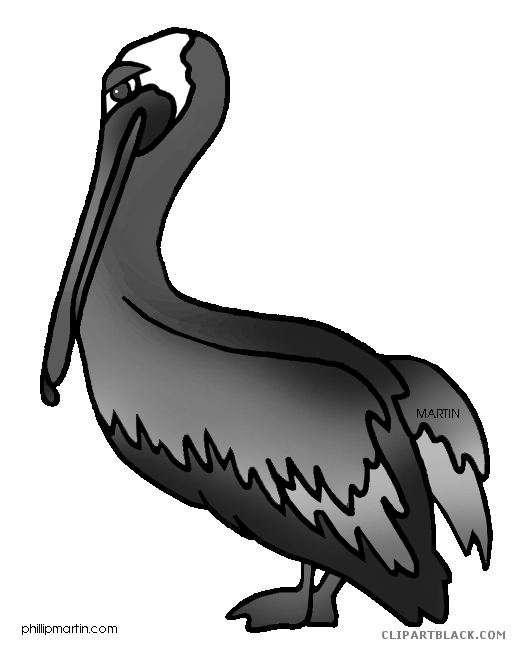 Pelican clipart black and white. Page of clipartblack com