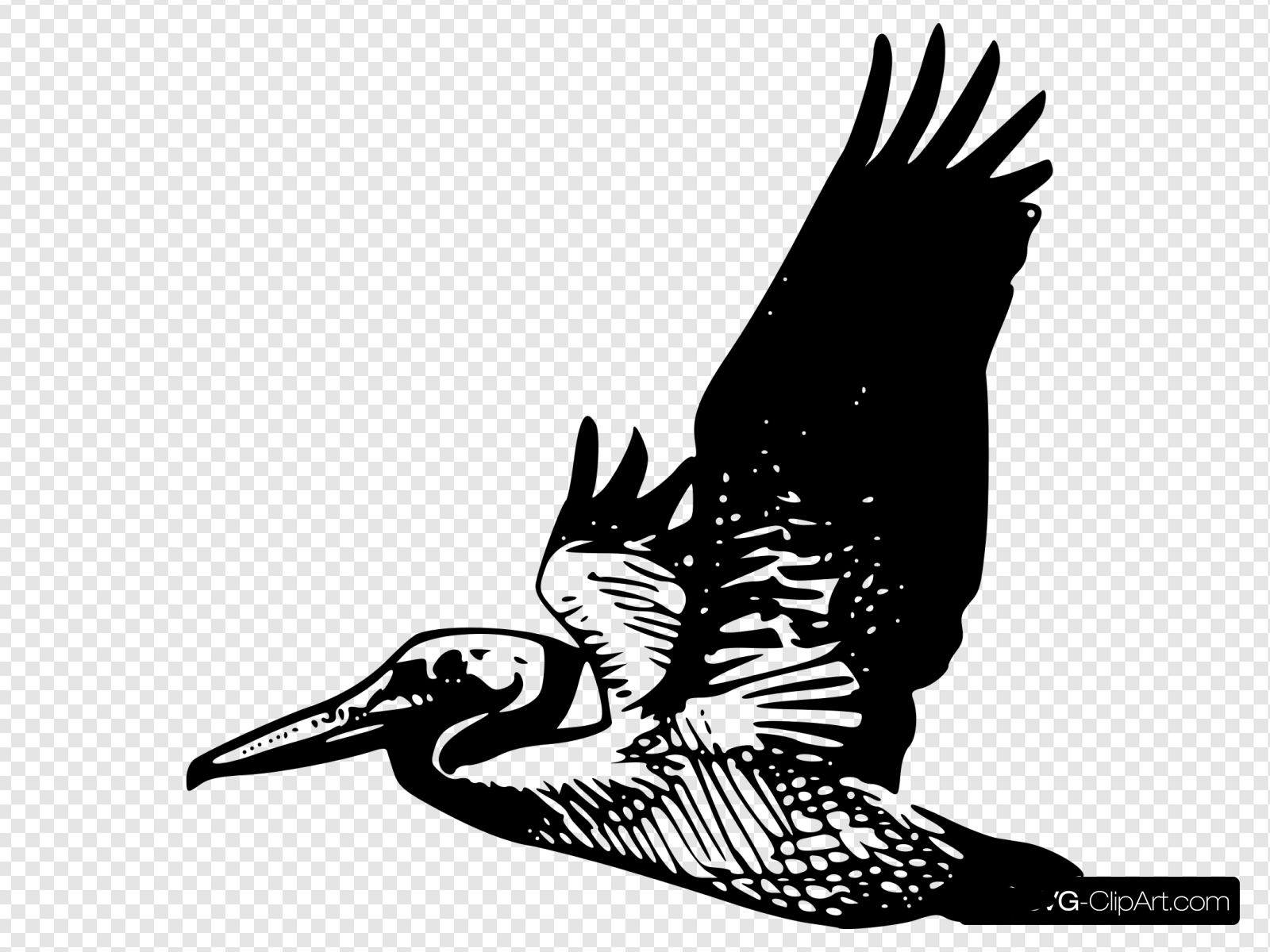 Pelican clipart icon. Flying clip art and