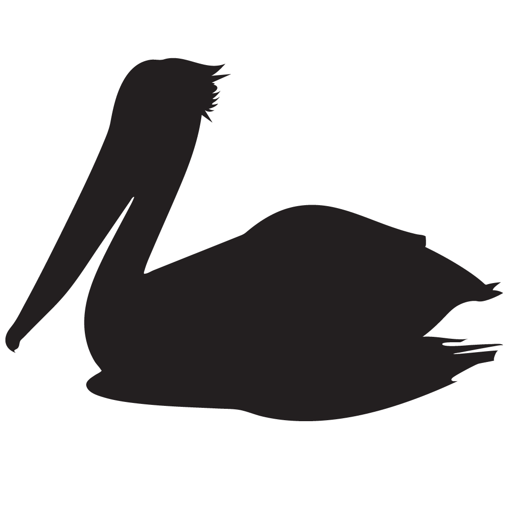 Pelican clipart icon. Flying silhouette at getdrawings