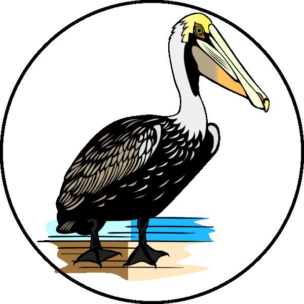 Habitat panda free images. Pelican clipart vector