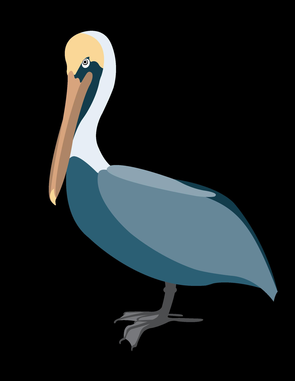 Pelican clipart vector. Clip art new orleans