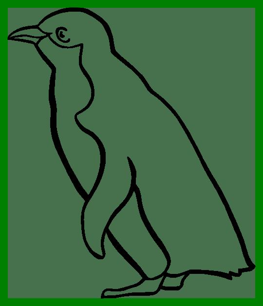 penguin clipart line