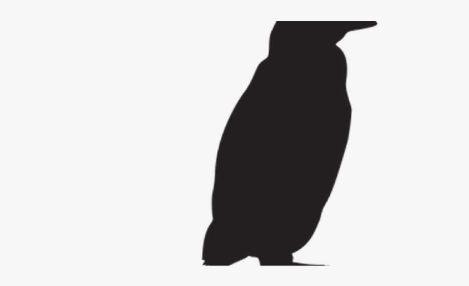 Ad lie free . Penguin clipart profile
