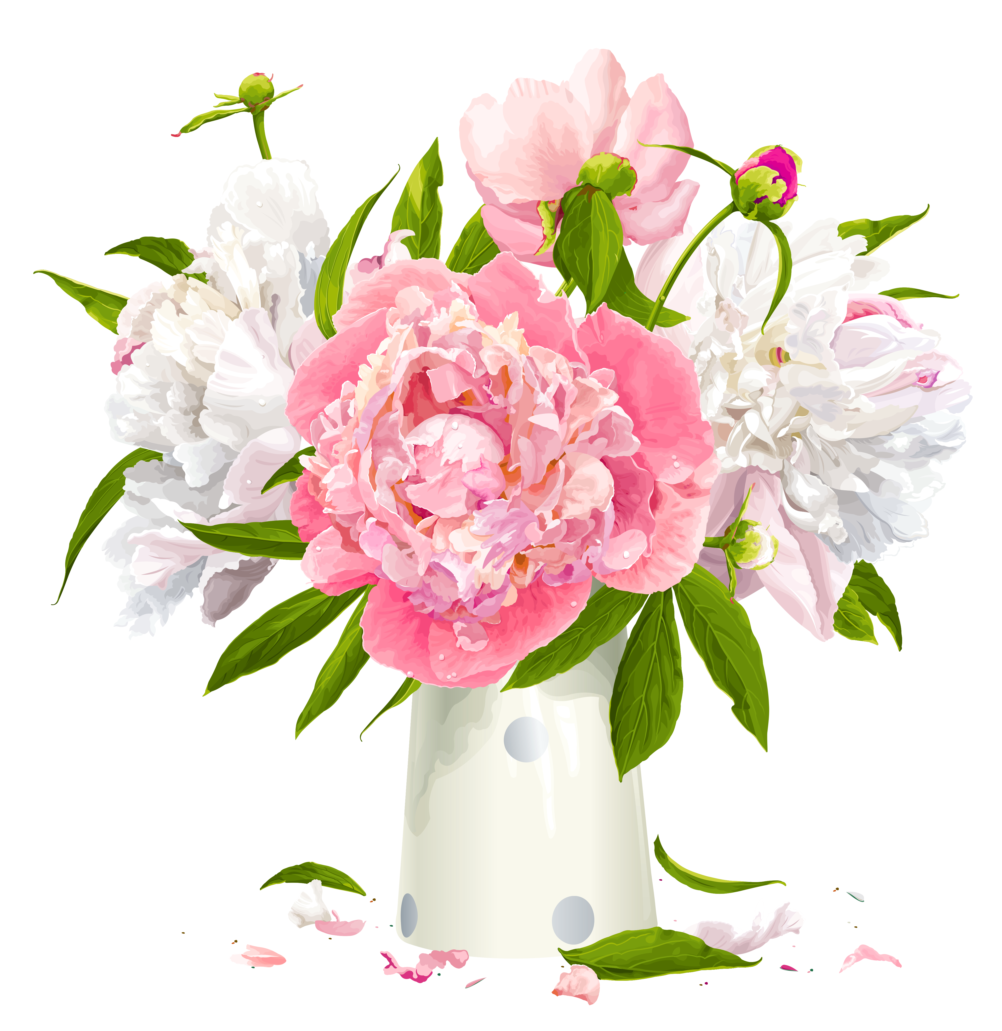 Vase with white and. Peonies clipart