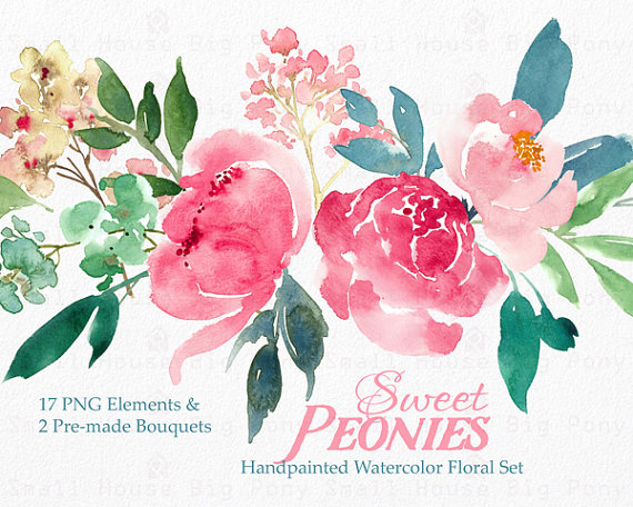 Digital watercolor flower clip. Peonies clipart
