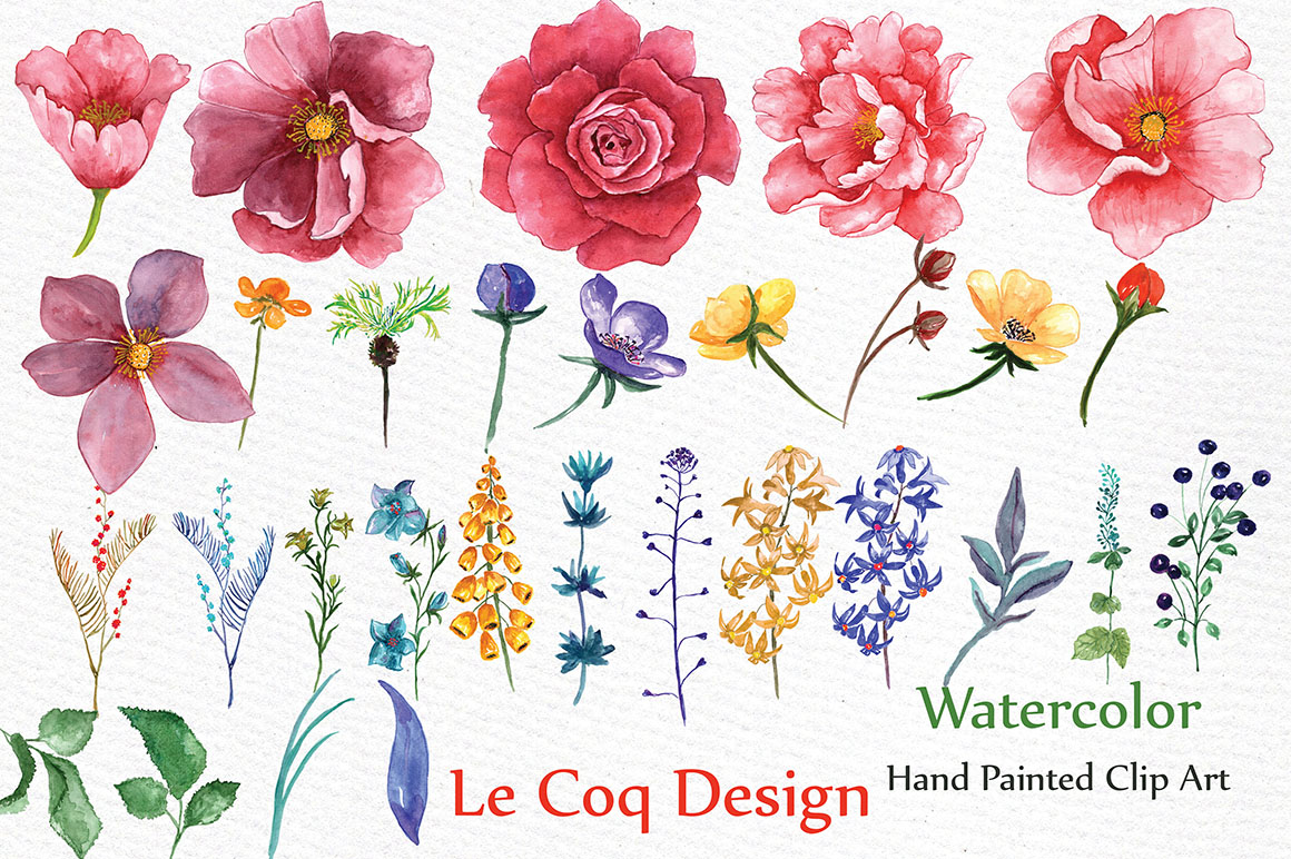 Peonies clipart. Watercolor by lecoqdesign thehungryjpeg