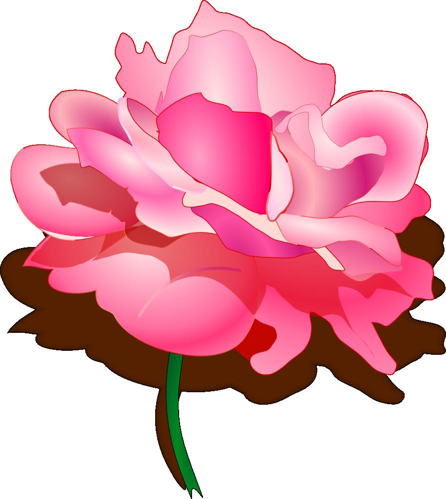 Peony clipart wedding flower. Onlinelabels clip art rose