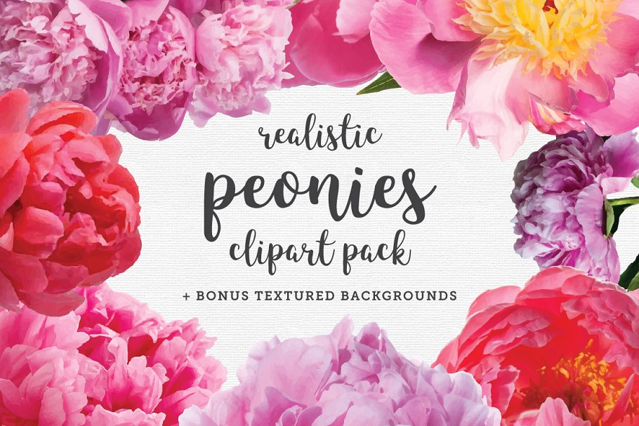 Peonies clip art pack. Peony clipart realistic