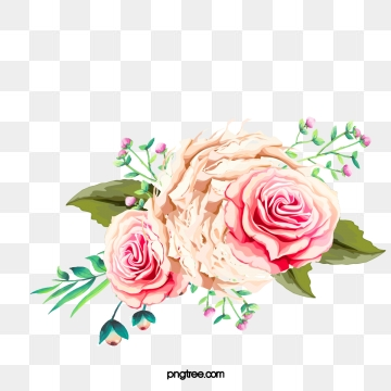 Peony images png format. Peonies clipart graduation flower