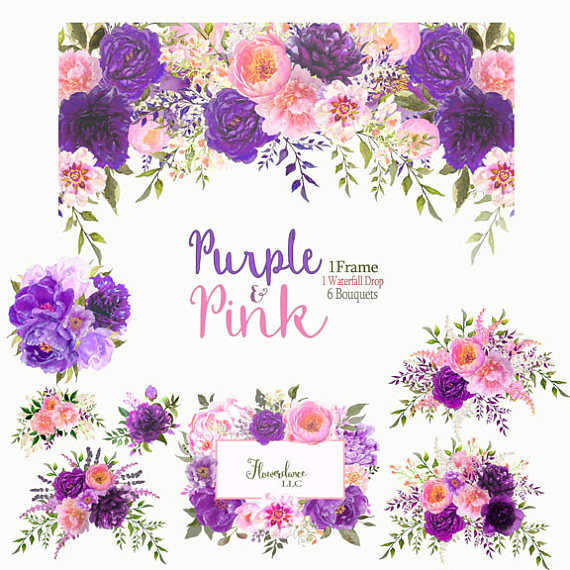 Peony clipart. Purple and pink flower