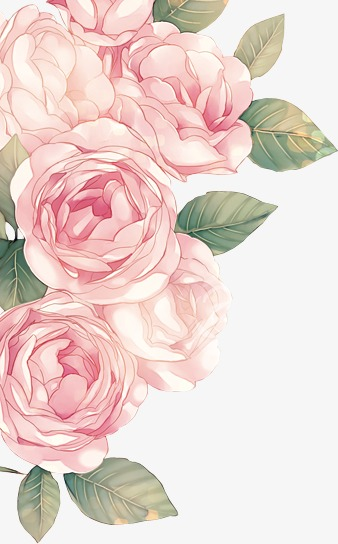 Pink png image and. Peony clipart