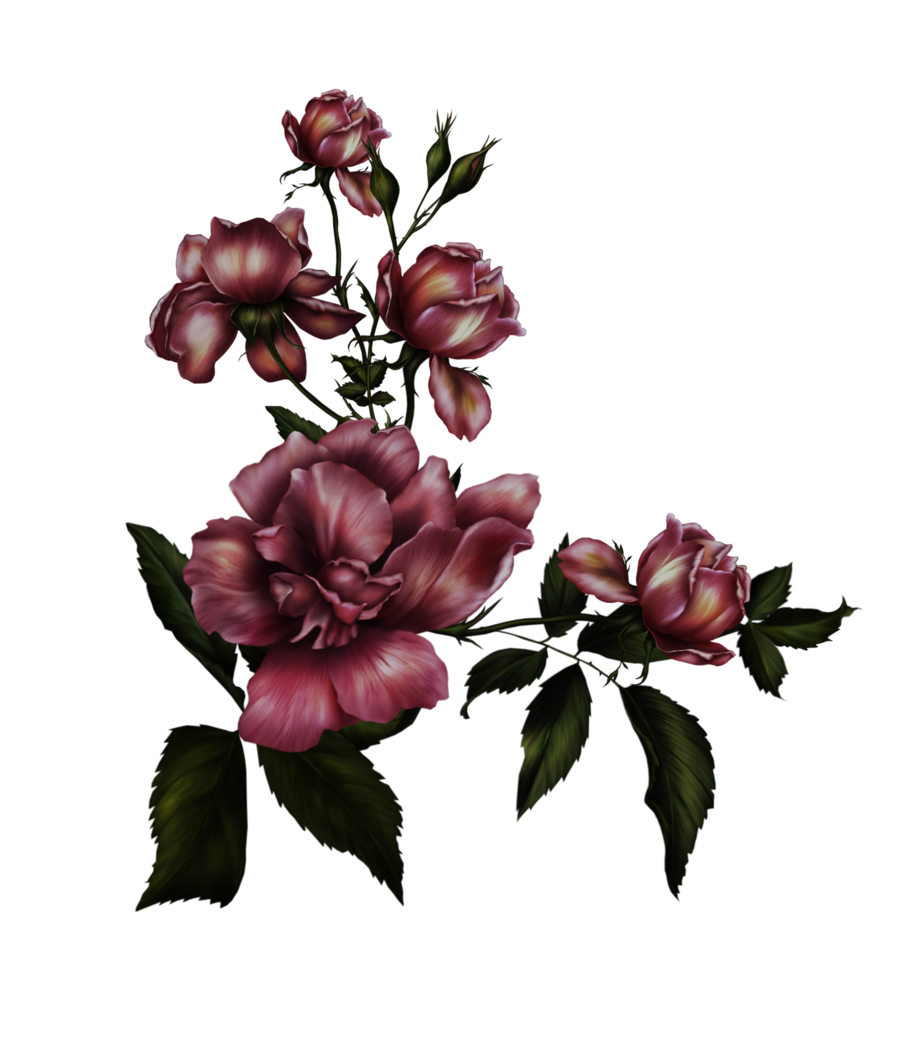 Gothic flower by collect. Free png images with transparent backgrounds