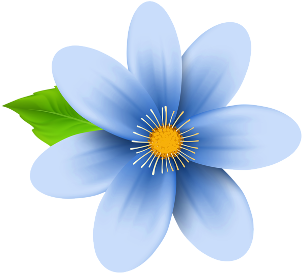 Gallery flowers . Blue flower png
