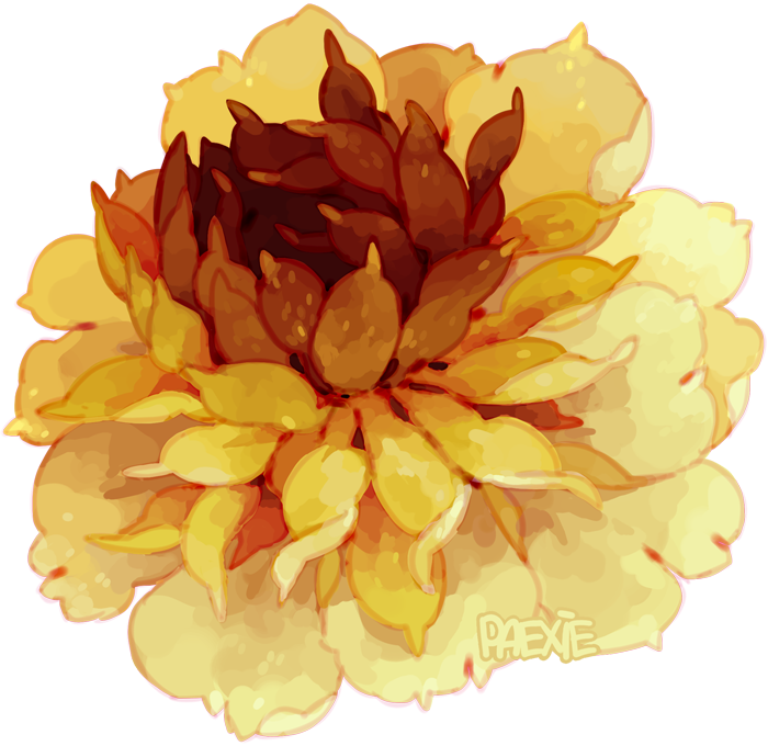 Peony clipart yellow. Paexie