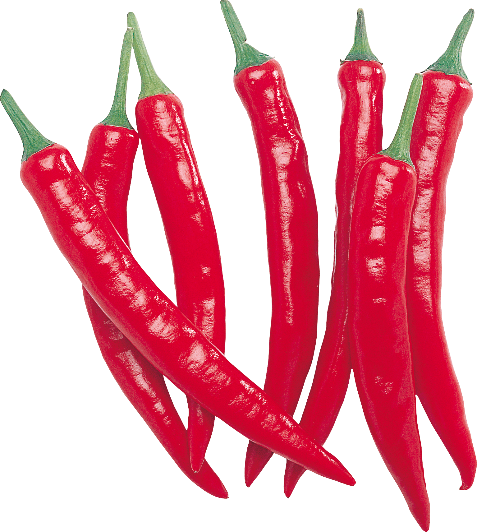 Red chilli row transparent. Peppers clipart serrano pepper