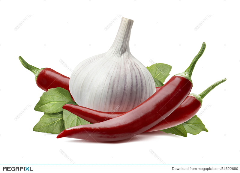 Bulb isolated on white. Pepper clipart chili garlic