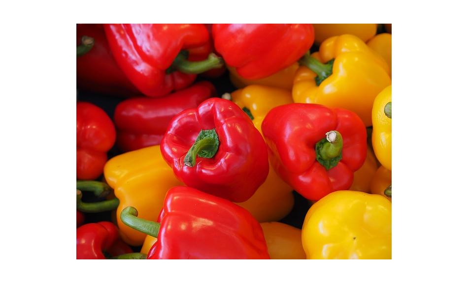 Peppers clipart pepper spanish. Dutch hailstorms benefits polish