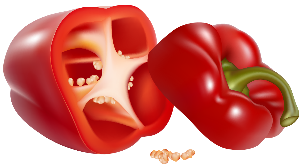 Png picture gallery yopriceville. Pepper clipart red pepper