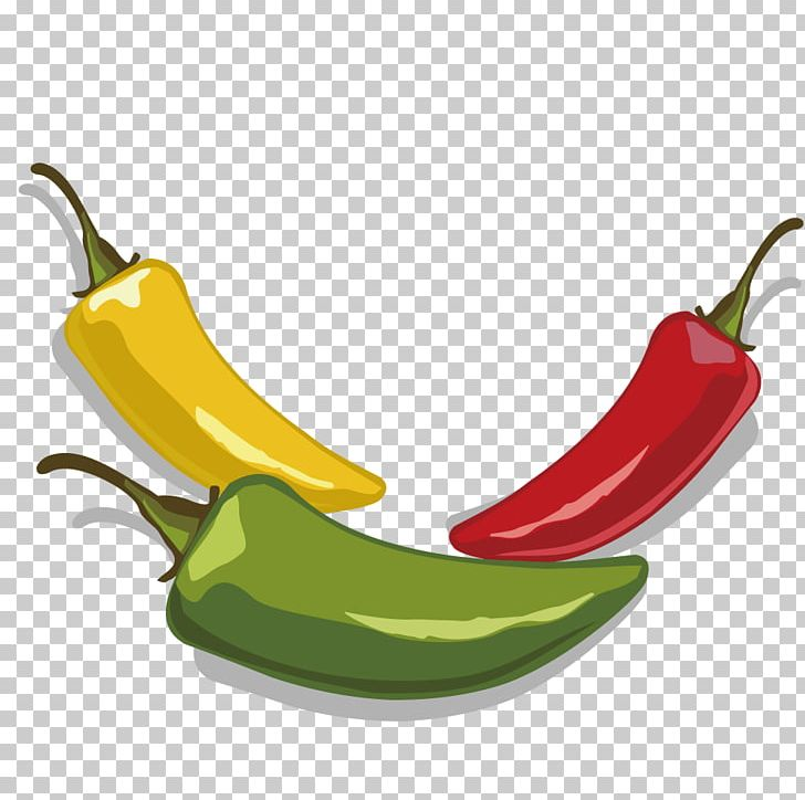 Jalapexf o tabasco png. Pepper clipart serrano pepper