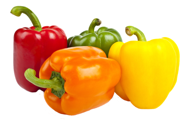 Peppers clipart single vegetable. Pacheco customs brokers specializing