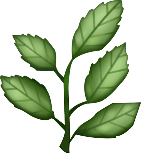 Plant clipart herb. Png transparent images all