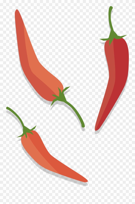 Tabasco birds eye chili. Peppers clipart serrano pepper