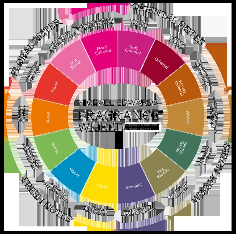 The fragrance wheel fragrances. Perfume clipart aroma