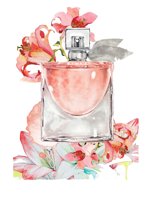 Perfume clipart watercolor. Painting illustration