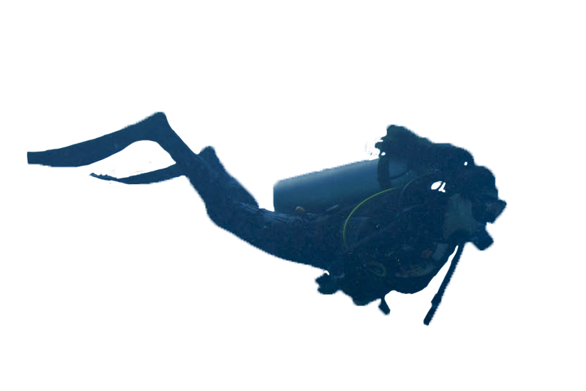 Diver png images free. Person clipart diving