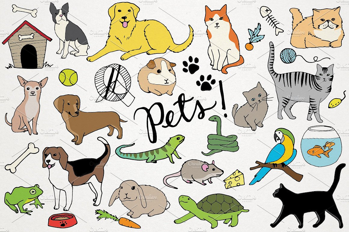 Pet clipart. Animals pets illustrations creative