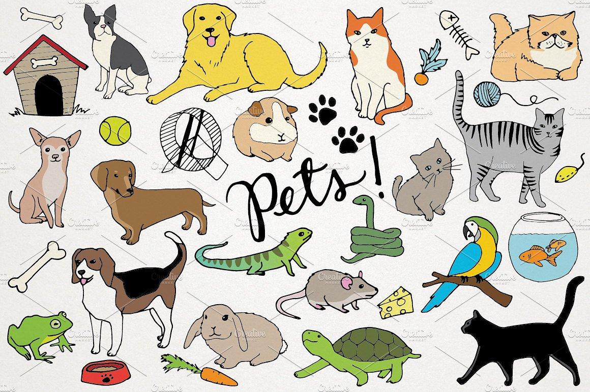 Animals & Pets Illustrations ~ Illustrations ~ Creative Market