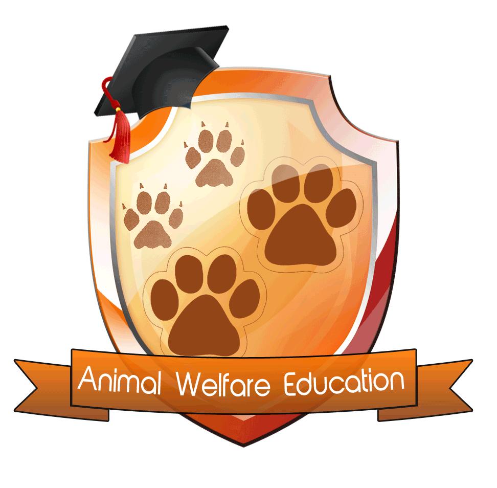 Pet clipart animal welfare. Education educating the community