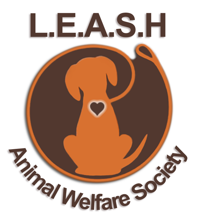 Pet clipart animal welfare. Pets for adoption at