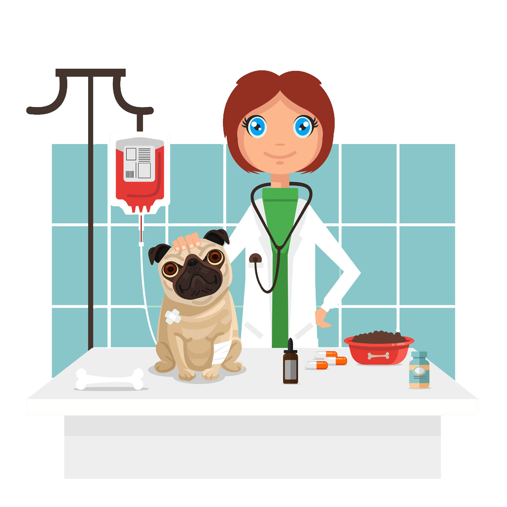 Veterinarian clip art cartoon. Pet clipart boy dog