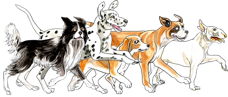 Pet clipart child dog. A magical personalised book