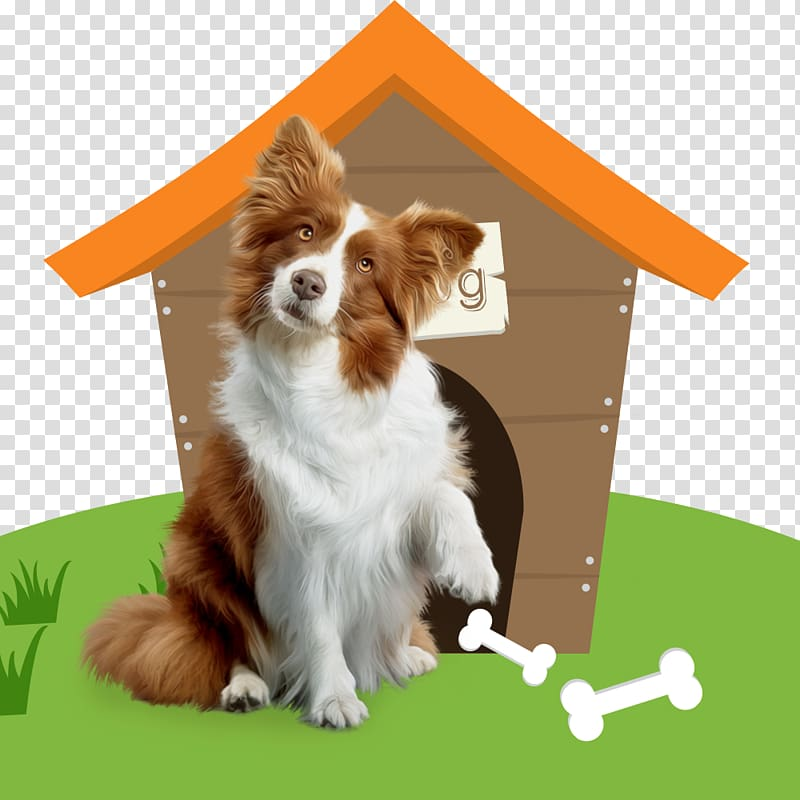 Dog breed cat house. Pet clipart companion
