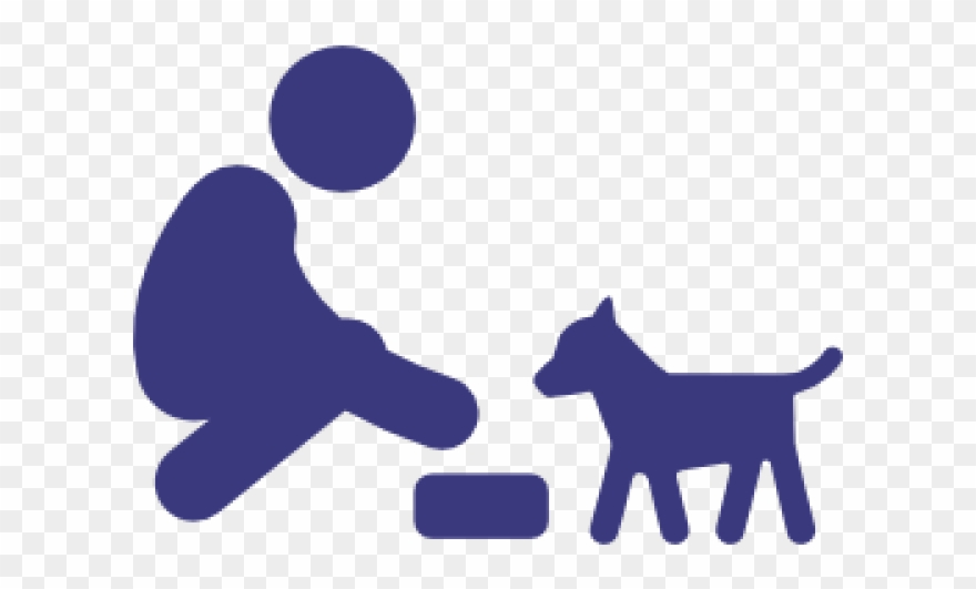 Pet clipart dog exercise. Pets feed a png