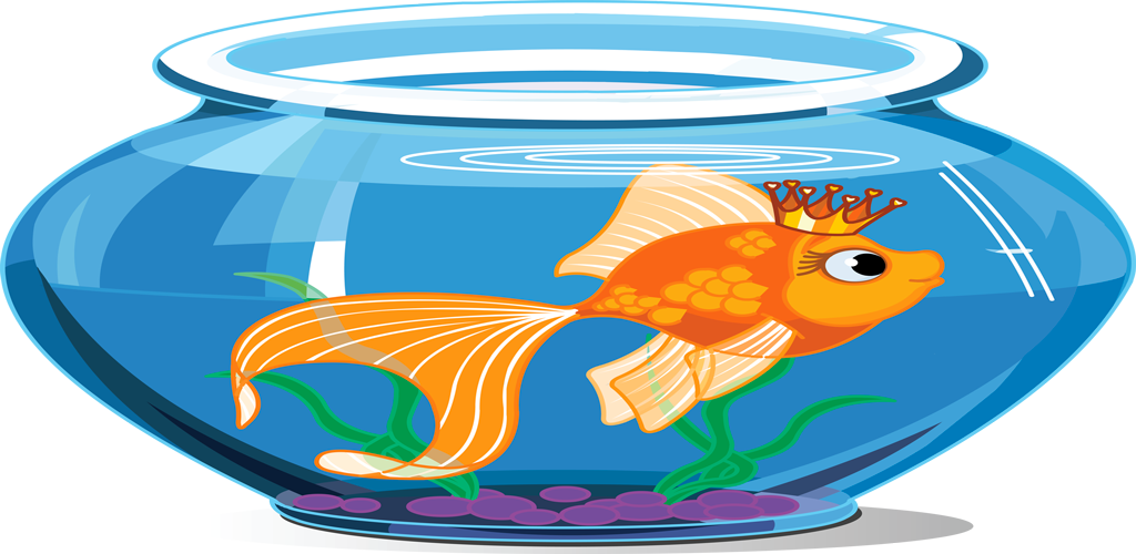 Pet clipart fish feeder. Amazon com tap aquarium