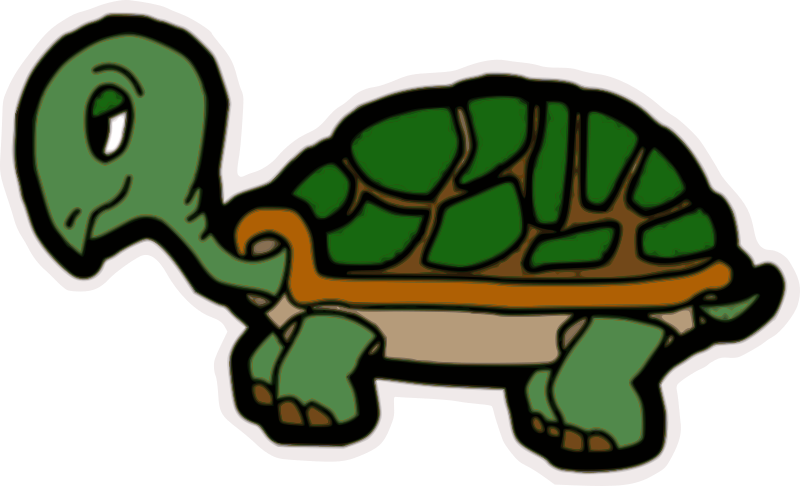 Pet clipart green turtle. Medium image png