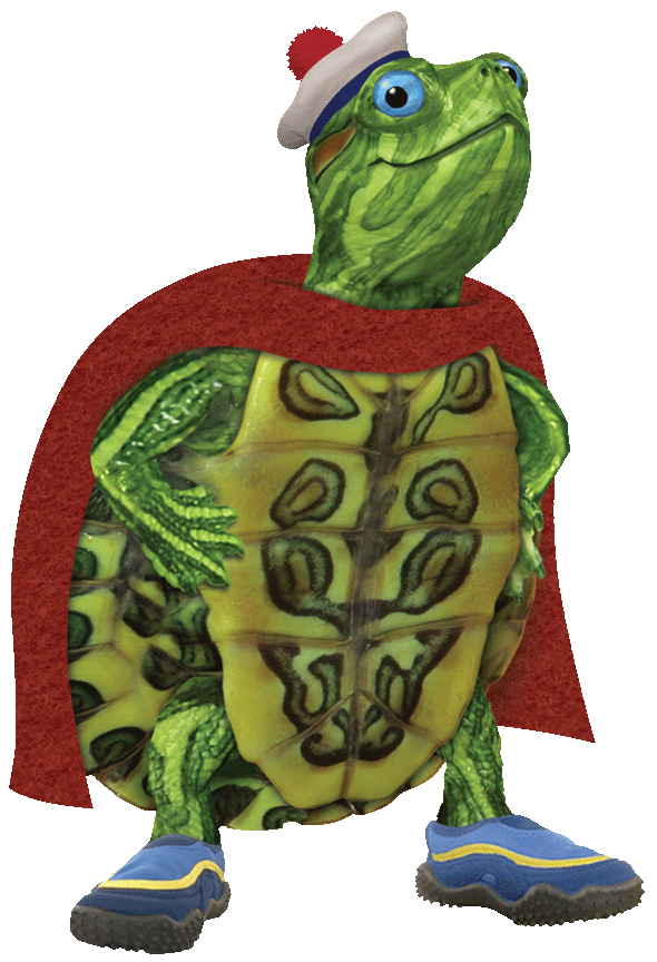 Tuck nickelodeon universe . Pet clipart green turtle