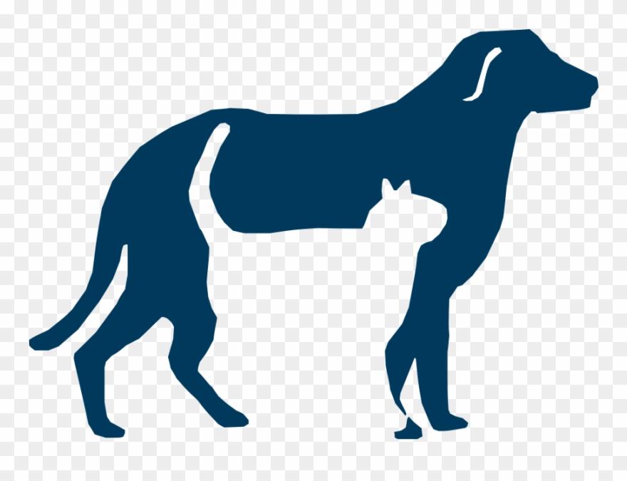 Veterinary society of san. Pet clipart humane