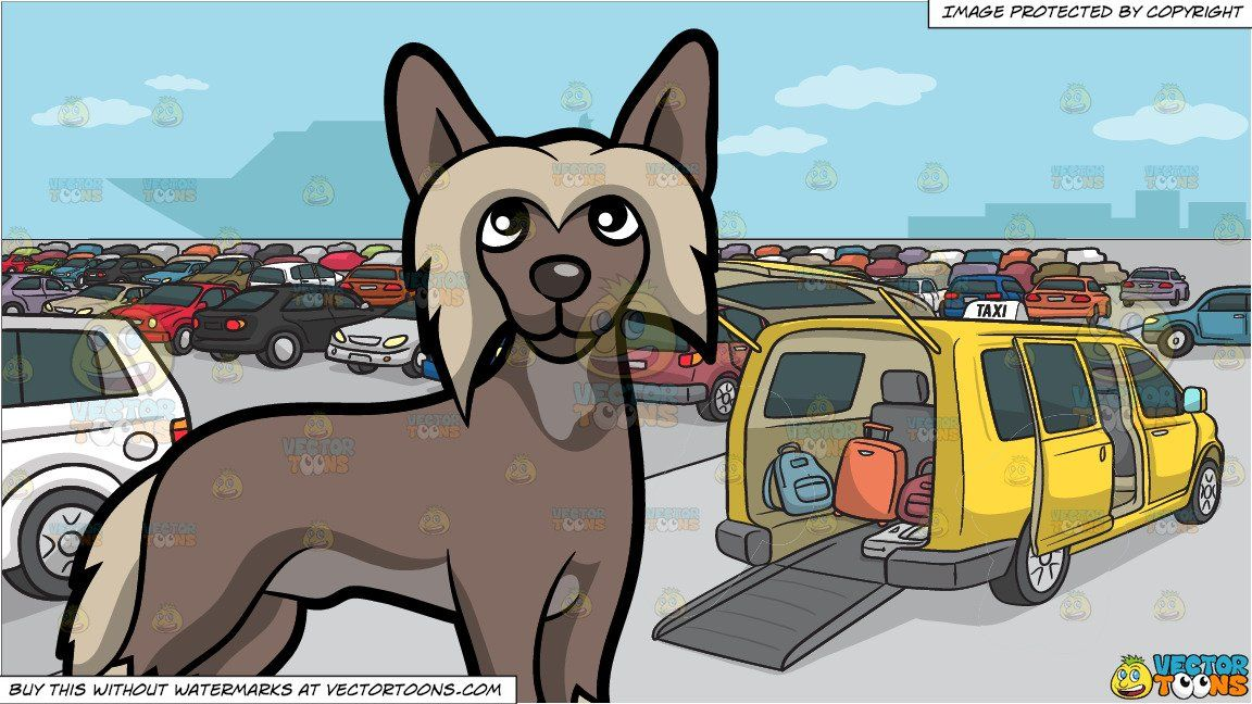 Pet clipart lot. An alerted chinese crested