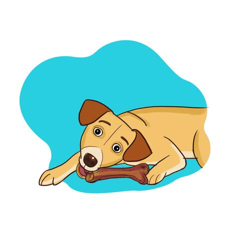 Pet clipart one dog. Free download clip art