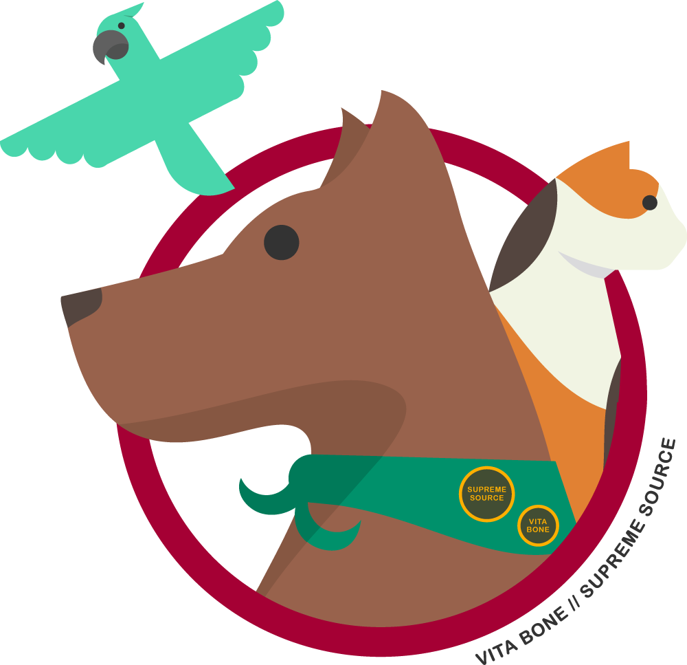 Are you and your. Pet clipart pet therapy
