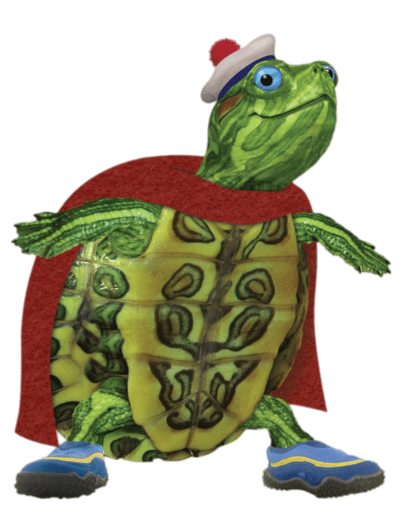Turtle tuck looking smart. Pet clipart pet tortoise