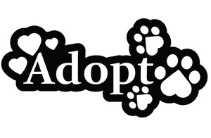 Pets clipart animal shelter. Free adopted dog cliparts