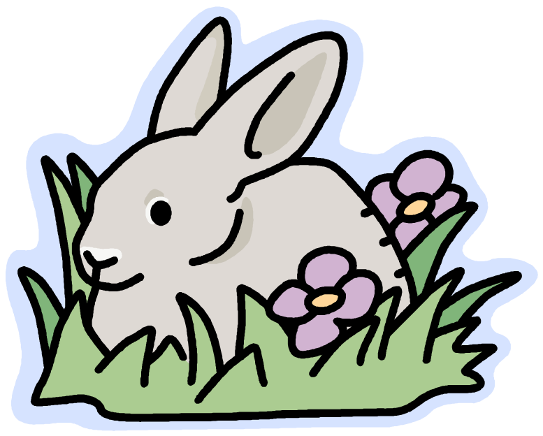 Esl writing exercise write. Pets clipart bunny