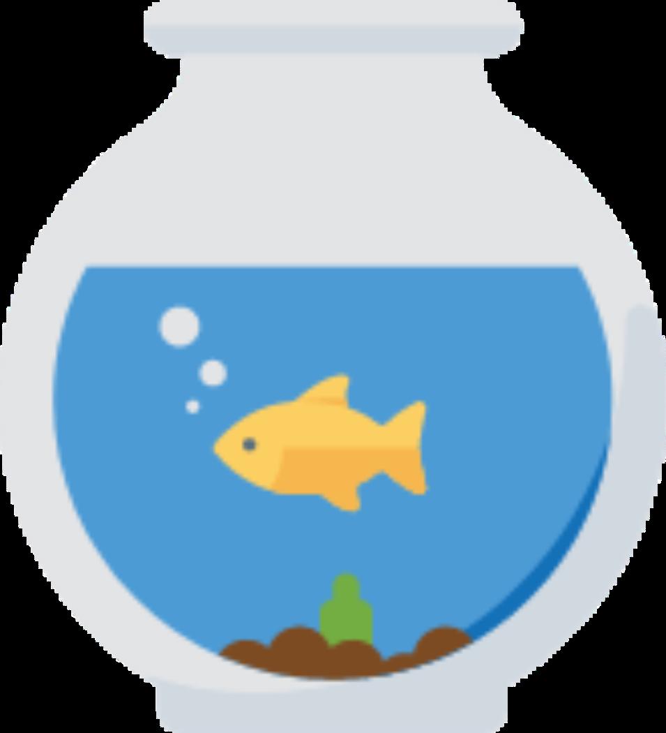 Aquatic pets. Pet clipart fish feeder
